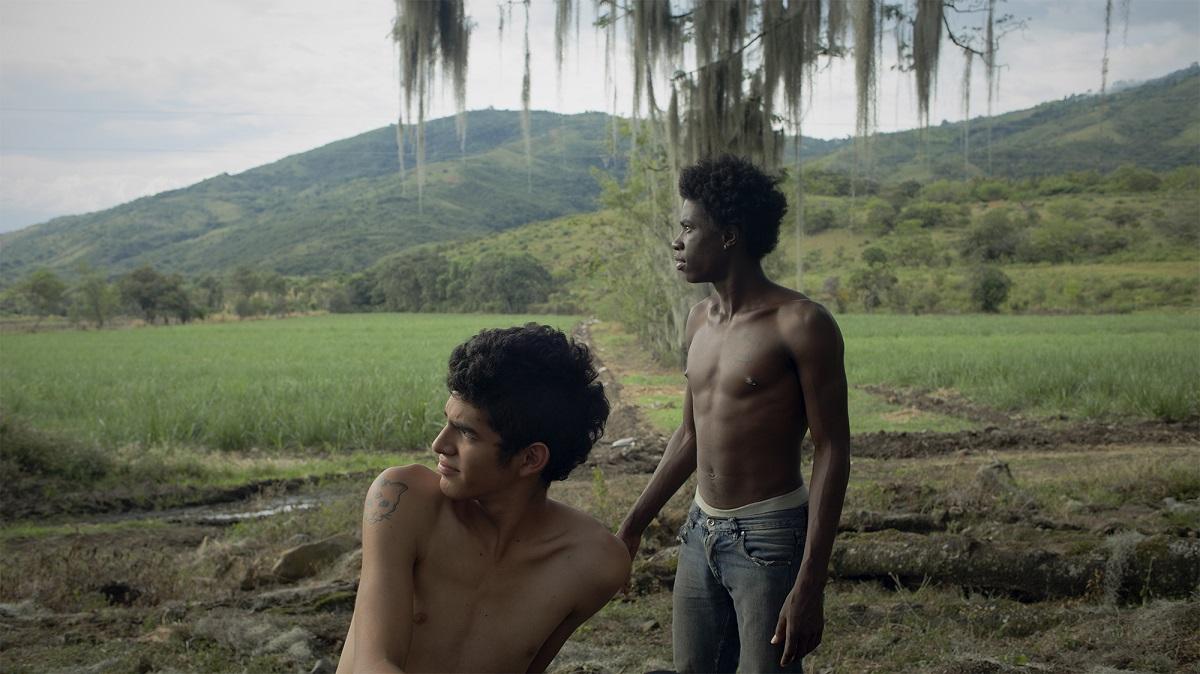 Τα Μανιτάρια / Los Hongos ταινία FeCHA φεστιβάλ ισπανόφωνου κινηματογράφου